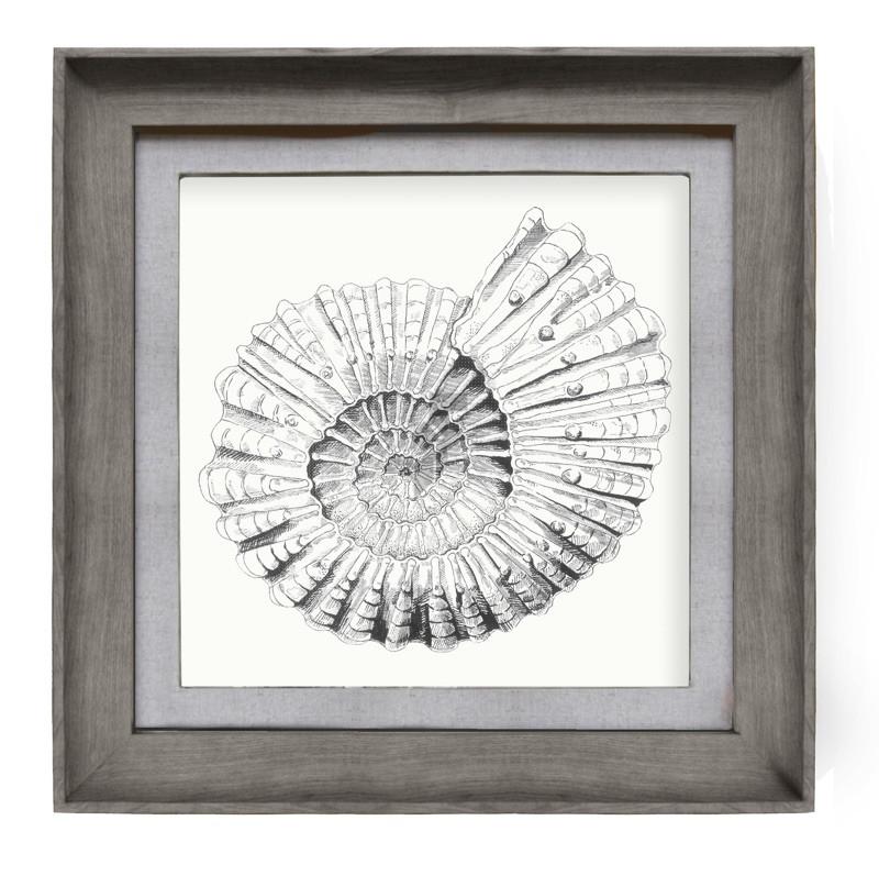 Voyage Maison Fossilium 46 x 46cm Framed Artwork - Stone
