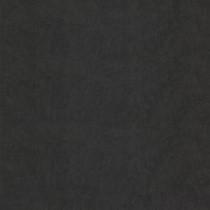 Wemyss Chroma Wallpaper - Raven